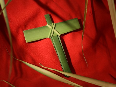 Palm Sunday palms from wallpapers.free-review.net
